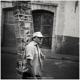 Man with caged birds walking the steets of Zacatecas city in Mexico