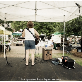 Troubadour playing at the farmers market in Charleston