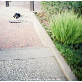 Skate board and jumper on side walk in Sonoma California